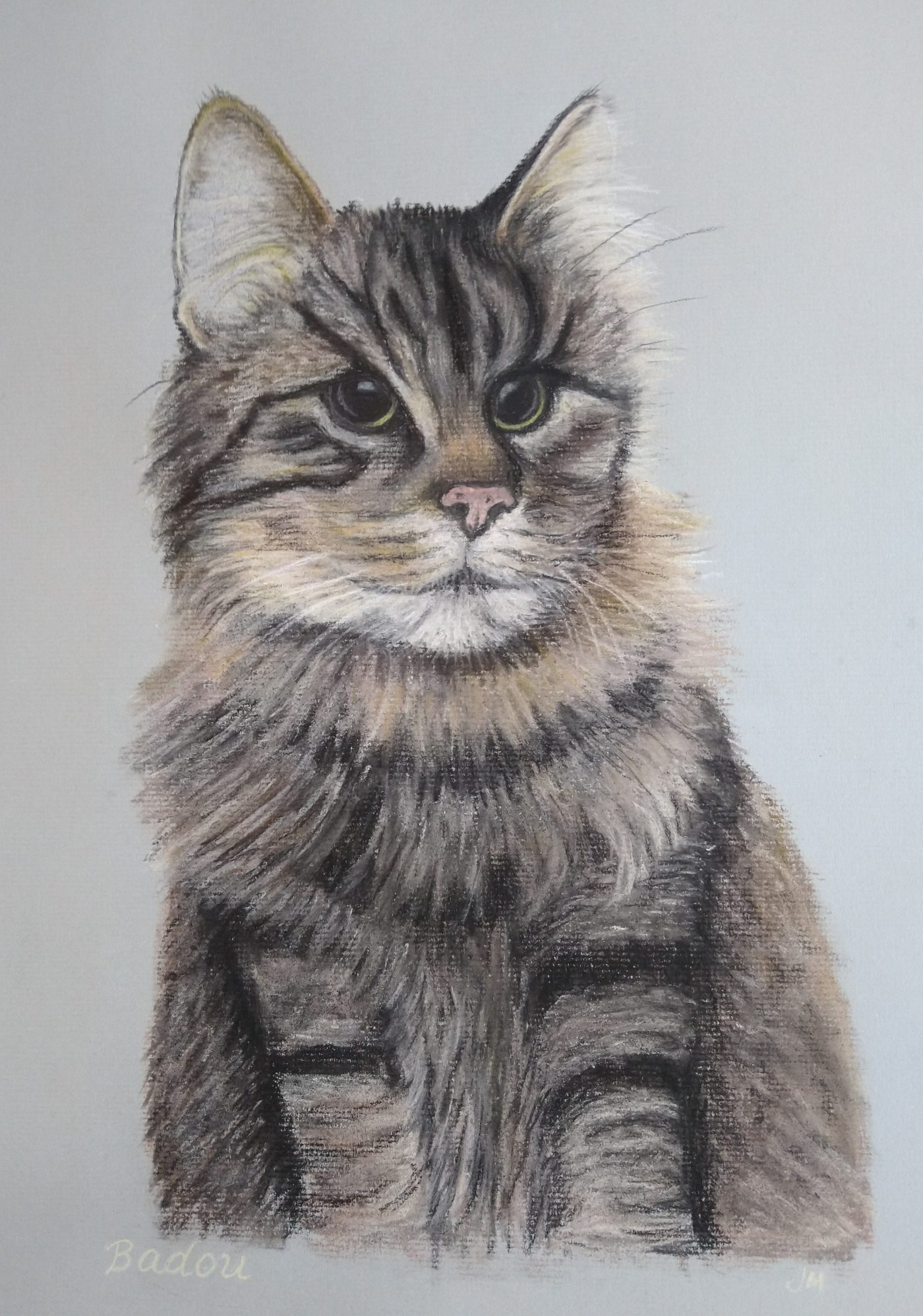 Pet Portrait, Cat, Cat Portrait, Pastel, Artist, Drawing, Painting, hand drawn